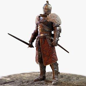 3D Knight Errant