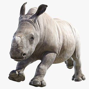 Rhino Baby Animated model