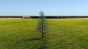 nature tree 3D model