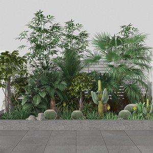 plant ficus palm cactus 3D model