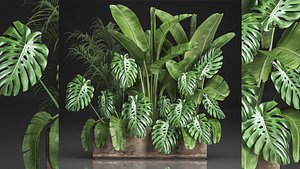 Houseplants in a flowerpot for the interior 937 3D