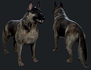 german shepher 3D model