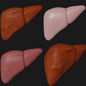 liver 3D model