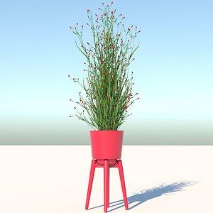 Flower 3 model