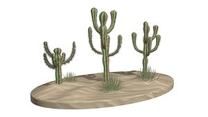 3 Mexican Cactus Low-poly 3D model