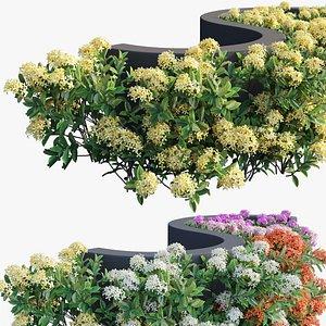 plant set 19 3D model