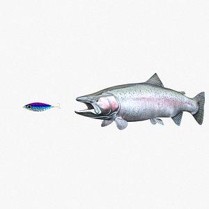 3D steelhead fish trout model