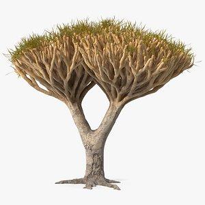 3D Dragon Tree