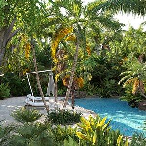 3D Bundle 10 – Palm garden
