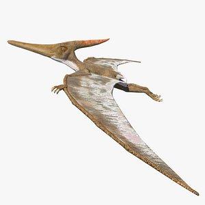 pteranodon reptiles 3D