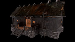 wiking house 3D