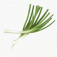 Spring onions 01