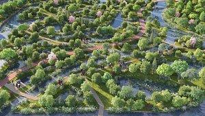 3D wetland forest landscape