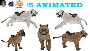 3D Animated White Tiger  3D model