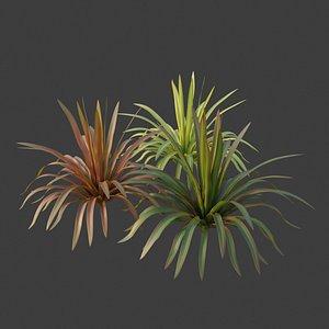 3D XfrogPlants New Zealand Flax - Phormium Tenax