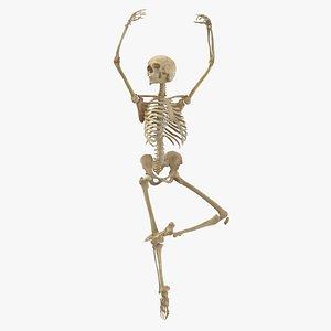 Real Human Female Skeleton Pose 84 3D
