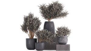 3D flower pot trees