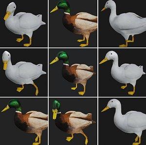 3D duck rigged white mallard