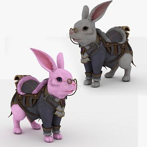 2 in 1 Rabbit Rigged and Animated model
