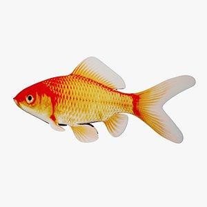 Fish 02 3D