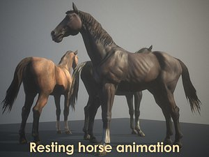 animation horse 3D model