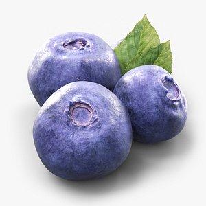 blueberries blue 3D