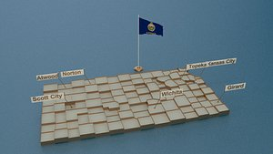 3D state flag