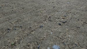 Muddy terrain and puddles 4 PBR 3D
