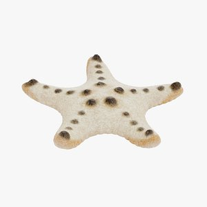 3D chocolate chip starfish rigged model