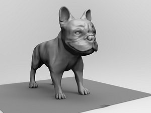 3D french bulldog model