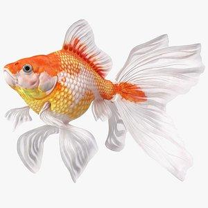 3D White Goldfish Aquarium Fish Swimming Pose