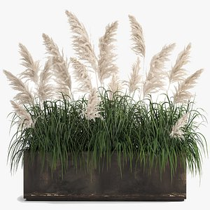 3D White Reeds in a rusty Flowerpot for the interior 1033 model