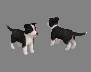 3D Cartoon pet puppy - Bianmu - baby dog model