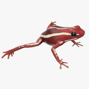 dart frog white 3D model