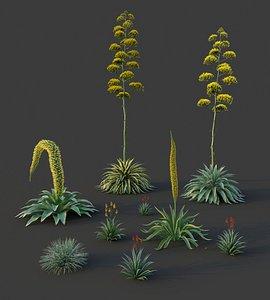 3D XfrogPlants Desert Flora Pack