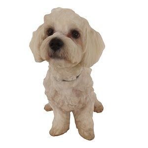 white dog sitting 3D model
