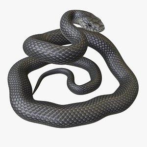 Black Mamba - Rigged 3D model