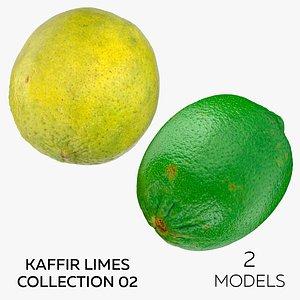 Kaffir Limes Collection 02 - 2 models 3D model