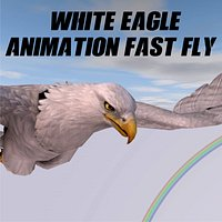 White Eagle Animation Fast Fly