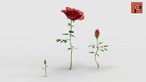 3D rigged rose model