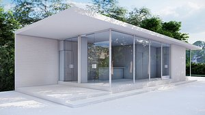 Minimalist House 0001 3D