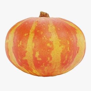 Pumpkin 05 3D