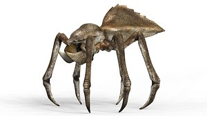Monster Spider With PBR Textures 3D