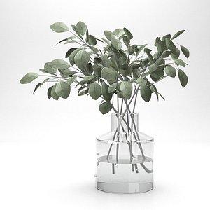 eucalyptus bouquet in glass vase model