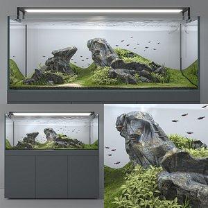 3D aquarium aquascape