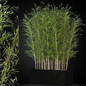 3D plants 271