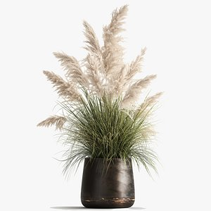 White Reeds in a rusty Flowerpot for the interior 1032 3D model