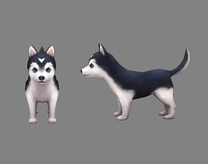 3D Cartoon puppy - Alaska - baby dog