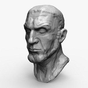 3D sculpture art bust