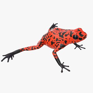 dart frog orange model
